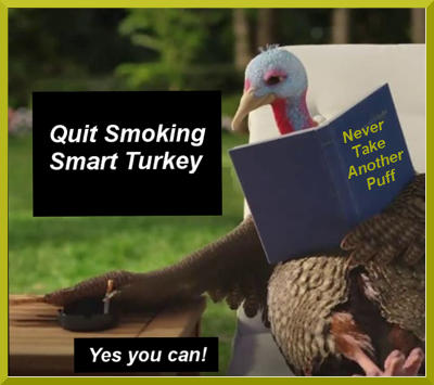 Pfizer image from its 2018 slow turkey commercial of a poolside lounging cartoon turkey putting out a cigarette while reading a book entitled Never Take Another Puff.  The recaptioned image is now titled 'Quit Smoking Smart Turkey' with the caption 'Yes you can' at the bottom.