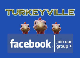 Click to visit Turkeyville, a cold turkey quit smoking support group