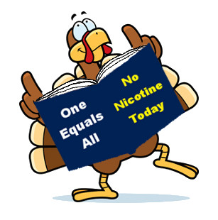 Smart Turkey - One Equals All