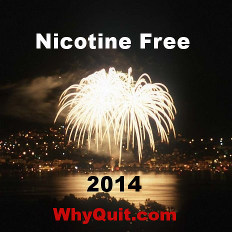WhyQuit's 2014 New Year's stop smoking resolution logo image